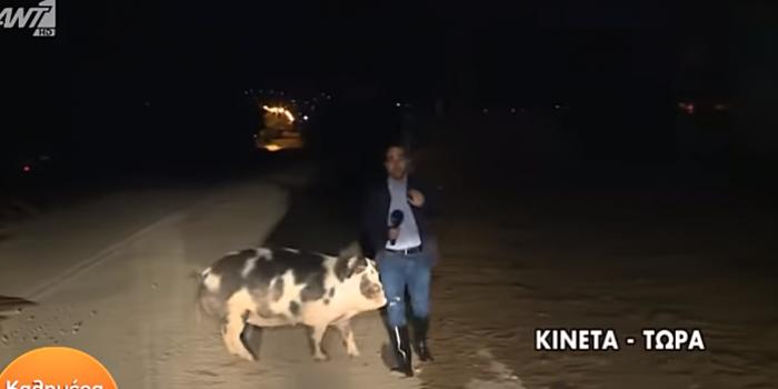 Фото – скриншот з відео newsbomb.gr