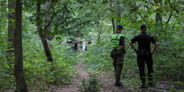 Криміналісти в Святошинському лісі Києва, де знайшли повішеним Віталія Шишова, фото - Радіо Свобода